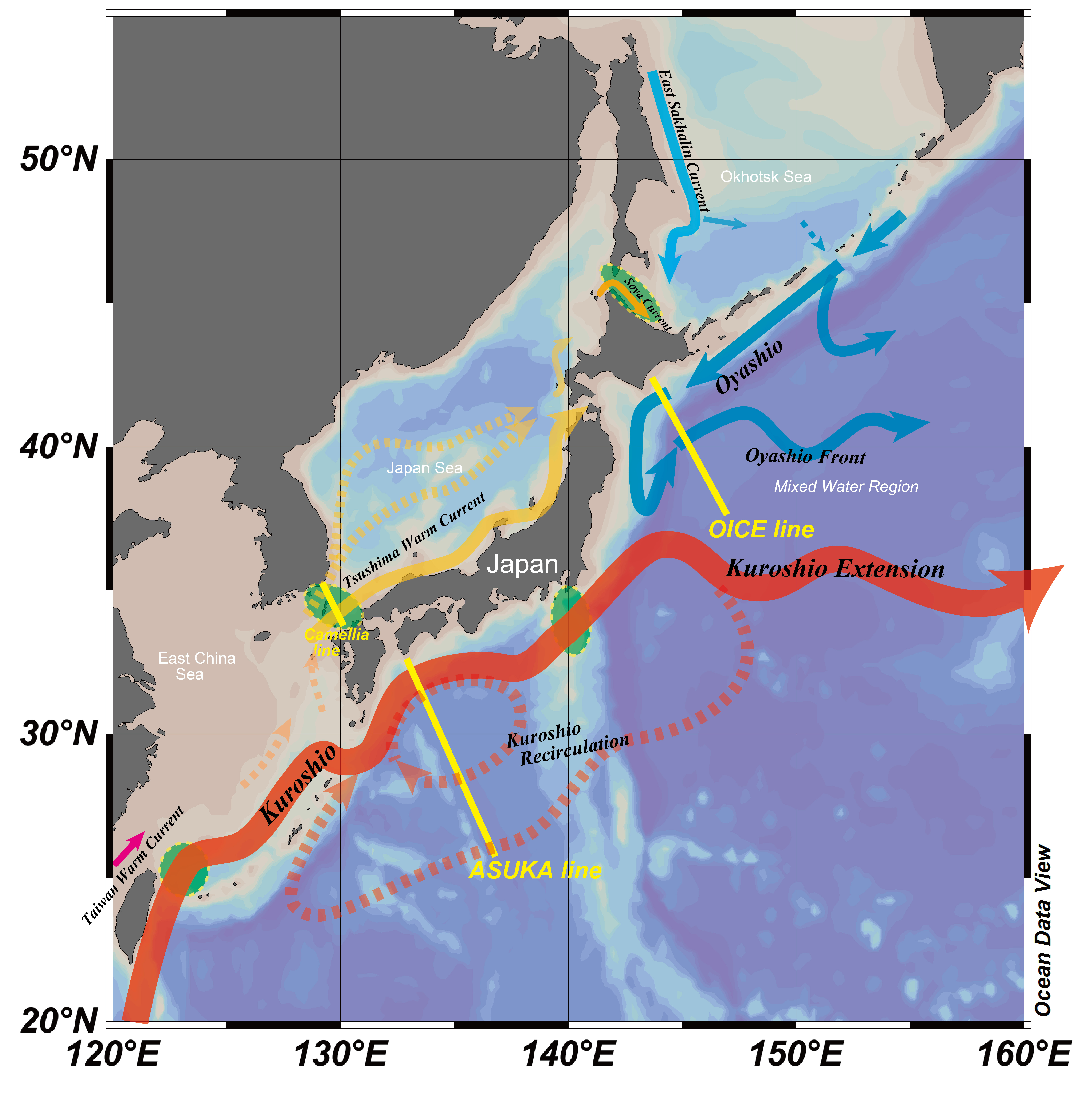 Of Sea Surface Height And Flow Fields In The Western North Pacific - Current height