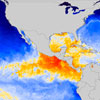 Read news item: El Niño Neutral Conditions