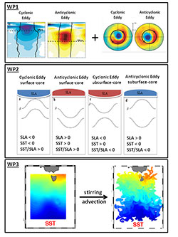 Merging of satellite and in situ observations for the analysis of meso and submesoscale dynamics