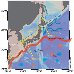 Variations of sea surface flow fields in the East Asian marginal seas and the western North Pacific