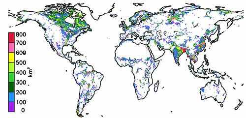Variability of terrestrial freshwater storage in the Tropics from multi-satellite observations