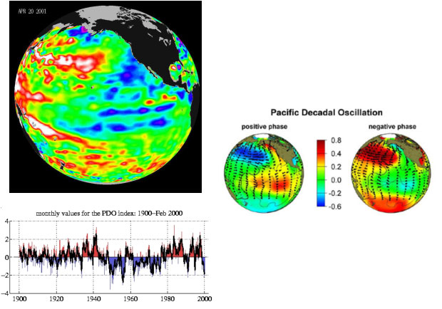 Pacific decadal oscillation (PDO) Image